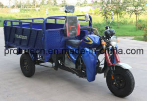 162 Fmj New Arrival Moto Cargo Tricycle pictures & photos