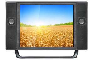 2017 New 19 Inch Wide Screen LCD LED TV pictures & photos