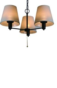 Outdoor Hanging Lamp pictures & photos