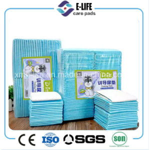 Dry and Soft Pet/Adult/Baby/Pet Pad with Blue Back-Sheet pictures & photos