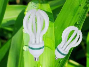 125W 150W Lotus 3000h/6000h/8000h 2700k-7500k E27/B22 220-240V Energy Saving Tube pictures & photos