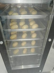 8tray Luxury Electric Oven (8D) pictures & photos