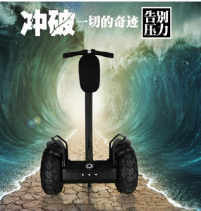 Woaoson New Personal Mini Transport Vehicle Two Wheels Chariot Scooterelectric Mini City Sports Utility Vehicle Chariot Scooter pictures & photos