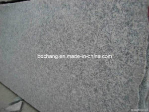 Polished Granite G602 Granite Slab pictures & photos