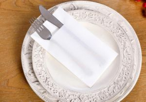 Folding Novelty Napkins for Knife