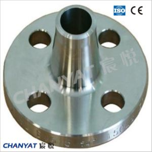 Wn Stainless Steel Weld Neck Flange (A182 F304H, F316H, F317) pictures & photos