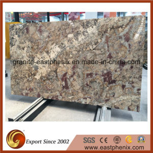 Imported Granite Slabs for Countertop/Vanity Top/Worktop pictures & photos