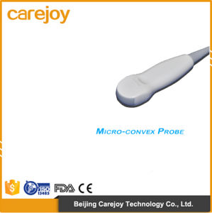 Factory Price 10-Inch Portable Ultrasound Scanner with Convex Probe (RUS-6000A) -Fanny pictures & photos