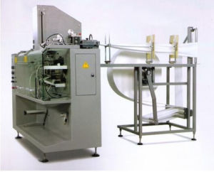 Horizontal Wet Tissue Packing Machine (DXDH-T110) pictures & photos