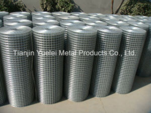 PVC Coated Welded Galvanized Iron Wire Mesh, Hot Dipped Galvanized Wire Mesh, Warehouse Welded Galvanized Storage Steel Wire Mesh pictures & photos