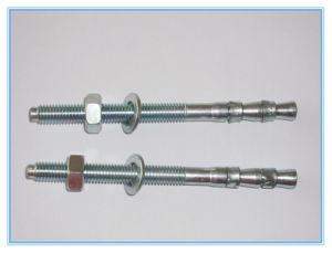 Stainless Steel Screw Type Wedge Anchor Bolt pictures & photos