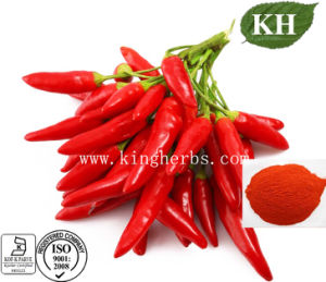 Losing Fat 1% Capsaicin Red Pepper Extract pictures & photos