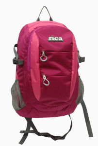 Leisure Student Bag Sports Laptop Backpack pictures & photos