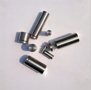 Stainless Steel Polish Satin Advertising Nail (ATC-275) pictures & photos