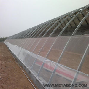 Anti-Insect Net for Agriculture&Garden 100%New HDPE pictures & photos