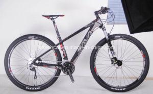 29inch Carbon Fiber Frame Mountain Bike pictures & photos