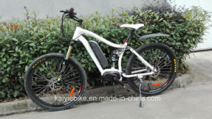 Suspention New Bafang MID Drive Mountain Electric Bike