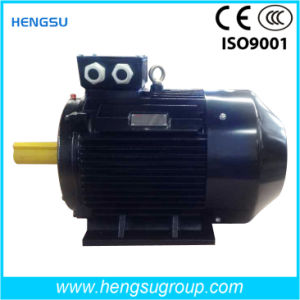 IE2 IE3 High Efficiency Asynchronous AC Electric Three Phase Induction Water Pump Air Compressor Squirrel Cage Motor pictures & photos