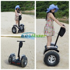 Ecorider off Road Two Wheel Electric Mobility Scooter pictures & photos