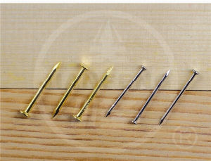 Copper Nail pictures & photos