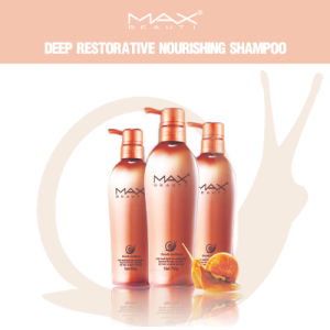 Deep Restorative Shampoo Nourishing Hair Shampoo