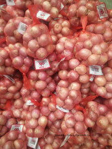 Shallot of New Crop with High Exporting 2017 Quality pictures & photos