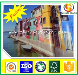 High Grade Art Coated Paper pictures & photos