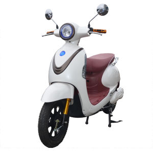 High Quality 48V20ah Electric Bike with Pedals pictures & photos