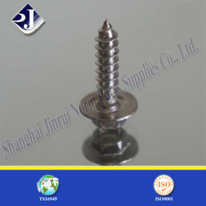 Stainless Steel Hexagonal Flange Screw pictures & photos