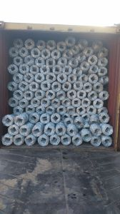 12ga X 14ga Hot Dipped Galvanized Barbed Wire pictures & photos