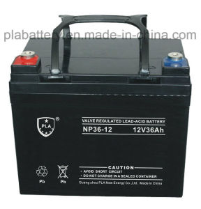 PLA Wholesale 12V 36ah UPS EPS Solar Lead Acid Power Battery
