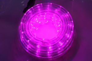 Waterproof LED Rope Light pictures & photos