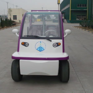 EEC Approved Electric Car pictures & photos