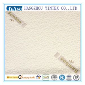 Yintex-Fabric of Bamboo Fiber Air Layer Fabric pictures & photos