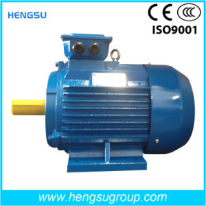 Ye2 15kw Three Phase Electric and Induction Cast Iron Motor pictures & photos