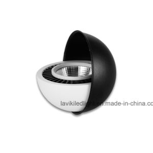 Surface Mounted LED COB Downlight Angled Spot Light with 3-20W pictures & photos