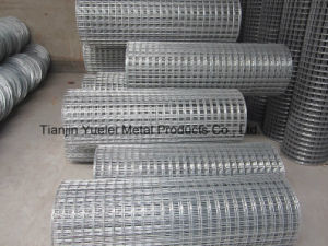 Electro Galvanized Square Wire Mesh for Building/Galvanized Iron Wire Mesh/Hot Dipped Galvanized Welded Wire Mesh pictures & photos