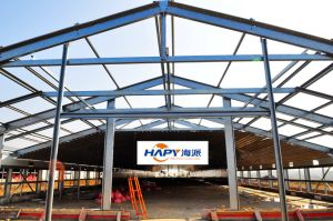 Steel Construction with Installation on Spot 2016 pictures & photos