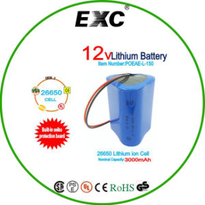 12vlithium Battery Exc26650 Battery Pack pictures & photos