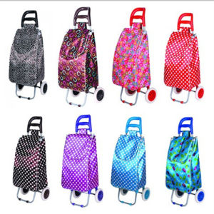 Cheap Supermarket Trolley Bags Manufacturers (SP-544) pictures & photos