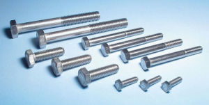 Titanium /Stainless Steel/Carbon Steel Bolts and Nuts pictures & photos