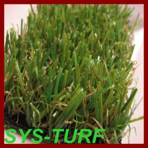 Landscaping Turf Grass with Spine Yarn pictures & photos