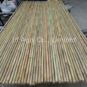 Natural Bamboo by Plastic for Agriculture Usage pictures & photos