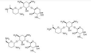 Gentamicin CAS No. 1403-66-3 pictures & photos