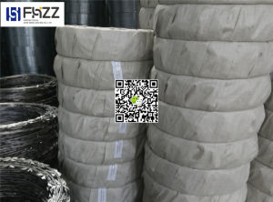 Cross Type and Singel Coil Razor Wire Cbt 60 pictures & photos
