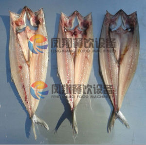 (FGB-170) Salmon Fish Belly Splitting Filleting Machine Cutting Two Pieces pictures & photos