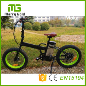 LCD Panel Ebike 36V 250W Folding Electric Bike pictures & photos