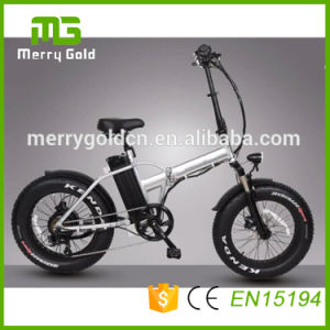 En15194 Approved Ebike 36V 250W Folding Electric Bike pictures & photos