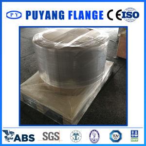 DIN2502 Pn16 Plrf Dn600 316L pictures & photos
