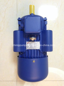 Chimp Yl Series Single Phase AC Electric Motor with Capacitor Starter pictures & photos